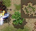 梦幻传奇网页,我有点事的祖玛雕像何况是